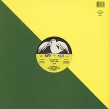 "Golden Teacher meets Dennis Bovell - ...At The Green Door [12""]"