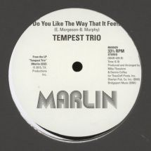 "Tempest Trio - Love Machine/ Do You Like The Way That It Feels [12""]"