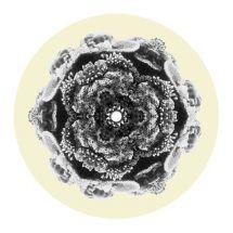"""Eltron John - The Light EP [12""""]"""