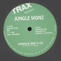 "Jungle Wonz (Marshall Jefferson) - The Jungle [12""]"