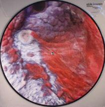 Masami Akita (Merzbow) - Wattle (picture disc) [LP]