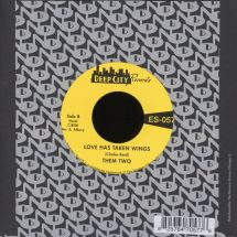 "Them Two - Am I A Good Man/ Love Has Taken Wings [7""]"