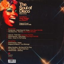 Joey Negro & Sean P - pres. The Soul Of Disco Vol.1 [2LP]