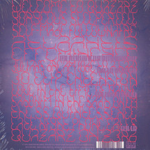 Shabazz Palaces - Quazarz vs The Jealous Machines [CD]