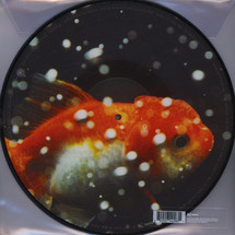Vince Staples - Big Fish Theory (picture disc) [2LP]