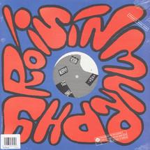 "Roisin Murphy - Play Thing/ Like [12""]"