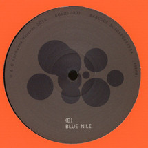 "Matthew Halsall - Journey in Satchidananda/ Blue Nile [12""]"