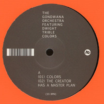 "The Gondwana Orchestra - Colors EP [12""]"