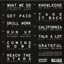 Swindle - No More Normal [LP]