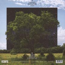 Fink - Bloom Innocent (White Vinyl Edition/ LP+MP3) [LP]