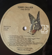 Terry Callier - Fire On Ice (180g) [LP]