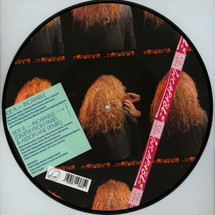 Roisin Murphy / Dimitri From Paris / Aeroplane - Incapable Remixes (Picture Disc)