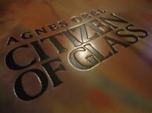 Agnes Obel - Citizen Of Glass [LP]