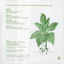 Mort Garson - Mother Earth