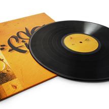 Fisz - Polepione Dźwięki (winyl+kaseta) [Pakiet]