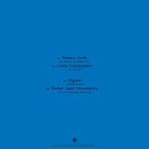 DJ Duch / Pejzaż / Speek - The Very Polish Cut-Outs Sampler Vol. 8 (Transparent Clear Vinyl)