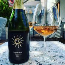 Dolny Śląsk, Polska - WWT Pinot Noir Chardonnay Brut 2014
