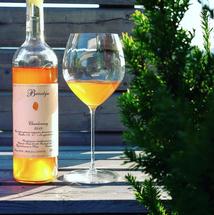 Wyżyna Sandomierska - Bursztyn 2019 (Chardonnay Skin-Contact) ECO